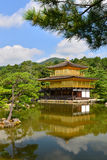Golden pavilion Kyoto Japan. Golden pavilion castle from the distance royalty free stock images