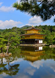 Golden pavilion Kyoto Japan. Golden pavilion castle from the distance royalty free stock image