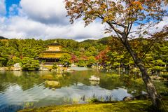 The Golden pavilion japan Royalty Free Stock Images