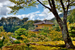 Golden Pavilion Through Trees. The Golden Pavilion in Kyoto Japan peeking up throught he tops of trees Royalty Free Stock Photo