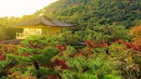 Golden pavillion or Kinkakuji in autumn. Golden pavillion in Kinkakuji Temple with autumn colors, Kyoto, Japan Stock Image