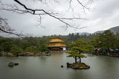 GOLDEN PAVILLION on a rainy day, Kinkakuji. GOLDEN PAVILLION on a rainy heavy day, Kinkakuji Stock Image