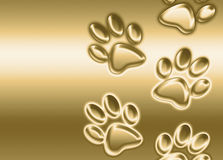 Golden paw prints Royalty Free Stock Image