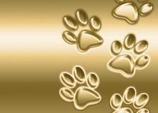 Golden paw prints Royalty Free Stock Image