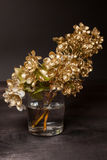 Golden Pear flowers Royalty Free Stock Photography