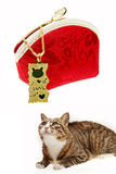 Golden pendant with cat. Golden pendant with a cute cat on white.It has been attracted by cat-type pendant Stock Image