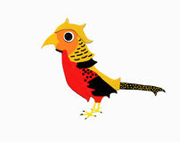 Golden pheasant. A little golden pheasant Royalty Free Stock Photography