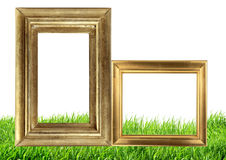 Golden photo frames on green grass nature background Royalty Free Stock Photos