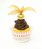 Golden Physalis and Chocolate Cupcake Stock Photography