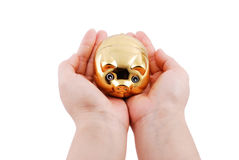 Golden pig Royalty Free Stock Photography