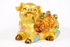 Golden Pig. Chinese style of golden pig carrying gold coins for wealth stock photo