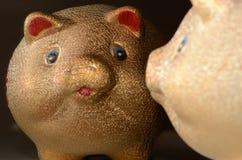 Golden Pig Stock Photos