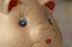 Golden Pig Stock Images