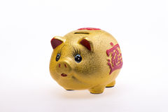 Golden Pig piggy bank Stock Photo