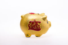 Golden Pig piggy bank Royalty Free Stock Photo
