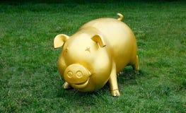 Golden pig Stock Photo