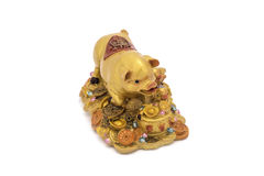 Golden pig on treasure, Charm Royalty Free Stock Photography