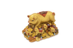 Golden pig on treasure, Charm Royalty Free Stock Images
