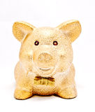 A golden piggy bank Stock Photos