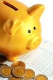 Golden Piggy Bank Royalty Free Stock Images