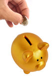 Golden Piggy Bank Royalty Free Stock Photography