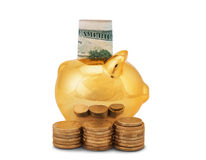 Golden piggy bank. With coins and banknotes isolated on white background Royalty Free Stock Photos