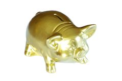 Golden piggy bank. Isolated on white Royalty Free Stock Image