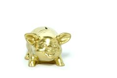 Golden piggy bank. Isolated on white Stock Images
