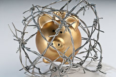Piggy bank behind barbed wire Stock Photo