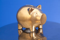 Golden Piggy Bank Stock Images