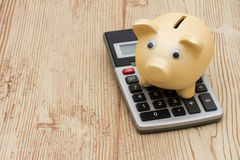 A golden piggy bank and calculator on wood background. A golden piggy bank and calculator on a wood background with copy space for your message Stock Photography