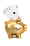 Golden piggy bank with cards Royalty Free Stock Image