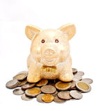 A golden piggy bank on coins. A golden piggy bank sitting on coins with white background Royalty Free Stock Images