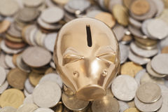 Golden piggy bank on coins Royalty Free Stock Images