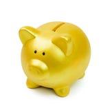 Golden piggy bank Stock Image