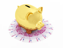 Golden piggy bank on  Euro  banknote Stock Images