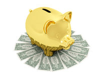Golden piggy bank on  Euro  banknote Stock Photography