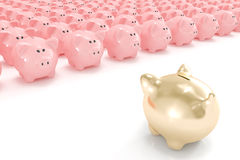Golden piggy bank facing hundreds of others Royalty Free Stock Photos