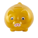 Golden piggy bank from front side isolated on White Background Stock Photos