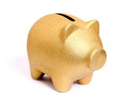 Golden piggy bank from front side right Stock Image