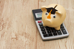 A golden piggy bank with grad cap and calculator on wood backgro. A golden with grad cap piggy bank and calculator on a wood background with copy space for your Stock Photos