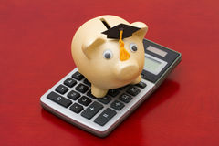A golden piggy bank with grad cap and calculator on wood backgro Stock Images