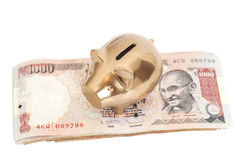Golden piggy bank on indian 1000 rupee royalty free stock photo