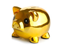 Golden Piggy Bank. Isolated on white background Royalty Free Stock Images