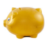 Golden piggy bank isolated on a White Background Royalty Free Stock Photography