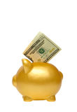 Golden Piggy Bank Stock Photography