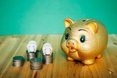 Golden piggy bank and Korean money coins on wooden desk. Piggy bank and Korean money coins on wooden desk Royalty Free Stock Photos