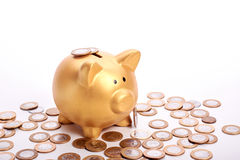 Golden piggy bank with savings in coins of the Brazilian money Royalty Free Stock Photography