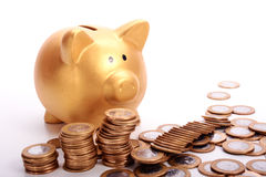 Golden piggy bank with savings in coins of the Brazilian money Royalty Free Stock Photo