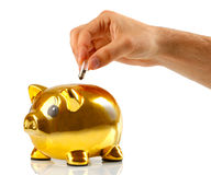 Golden piggy bank with small light bulbs Stock Images